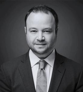 José Luis Stein